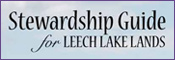 Stewardship Guide