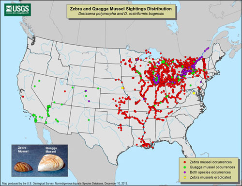 Where Are Leeches Found In The Us Map Zebra Mussels